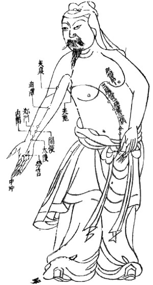 Acupuncture Chart (Wikipedia)