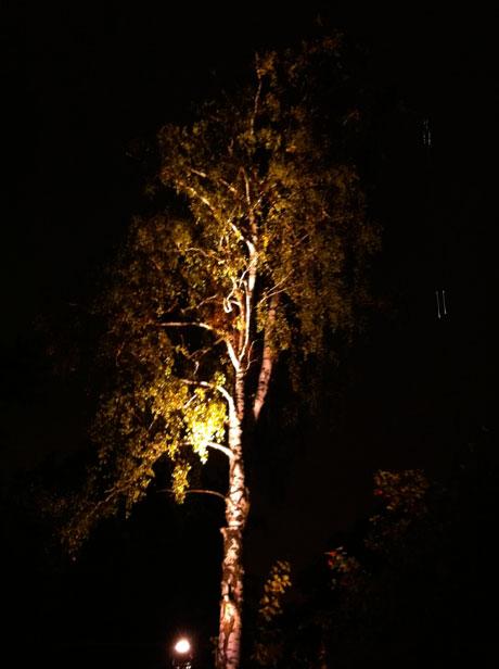 Verfälschte Impression, Villa Kivi bei Nacht