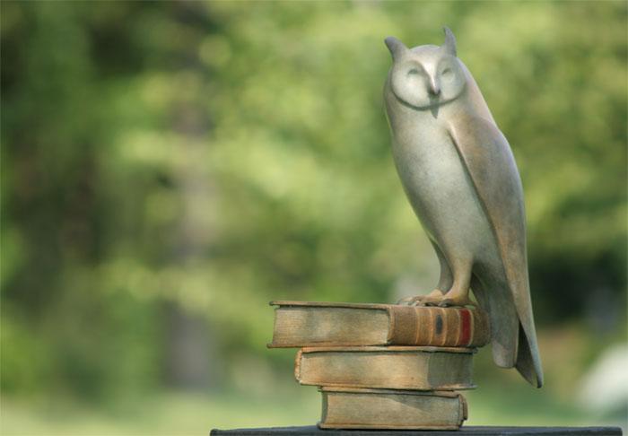 Long eared owl - © by Mark Dedrie
