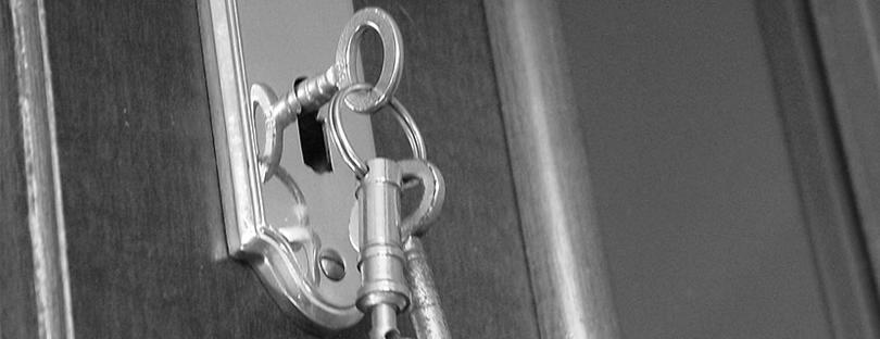 Verschlossene tür  Schlüssel › Turmsegler